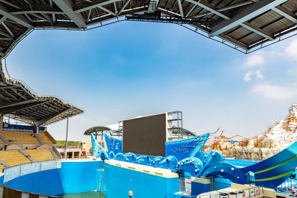 上海海昌海洋公园回应试运行门票买不到 10月20日后可买