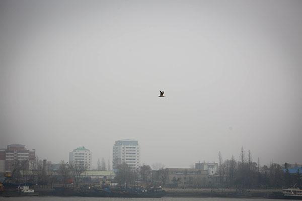 http://www.ddhaihao.com/youxiyule/80524.html