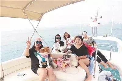 带着宠物环岛游!海南可以带狗狗玩的地方不完