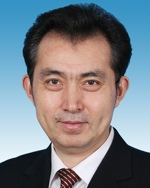 重庆人事调整:任学锋任市委副书记陈雍不再担任市纪委书记
