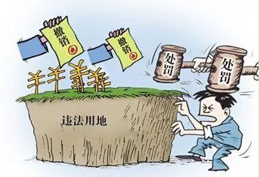 【澎湃问政】_前三季度长春市违法用地案件同比下降53%_权威发布_澎湃新闻-ThePaper.cn