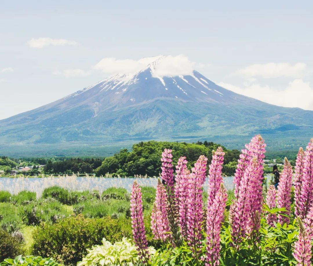 """日本人眼中的富士山:""""谁能凭爱意要富士山私有"""""""