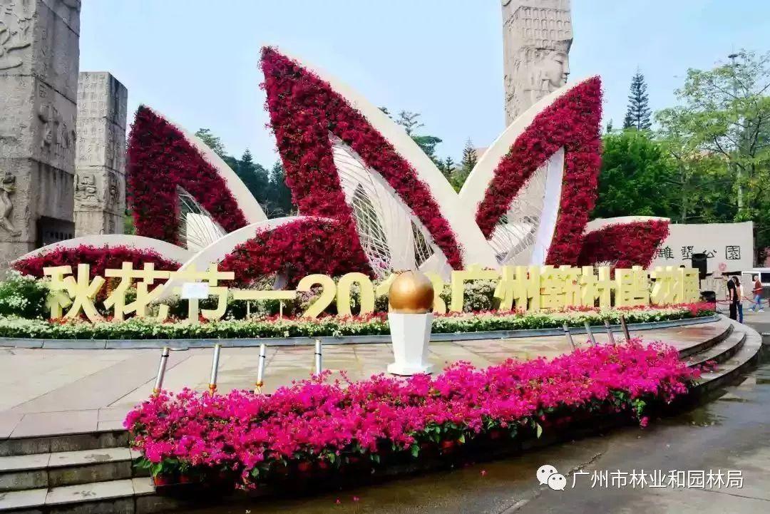 免费!全广州最美的网红花都集中在这里!周末