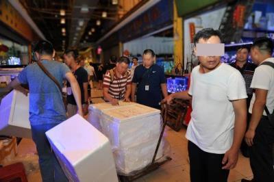 广州打掉多个销售国家保护动物石珊瑚犯罪团伙