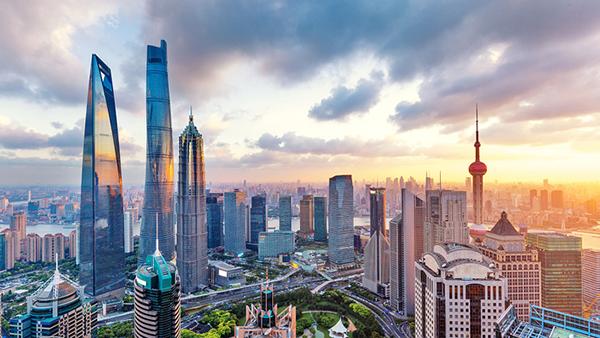 """""""刀刃向内""""成效如何?这组数字告诉你上海政府改革成效 国际"""