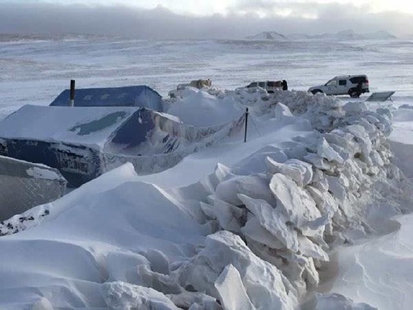 公益湃|玉树雪灾严重,三江源环保协会联合爱德基金会筹善款