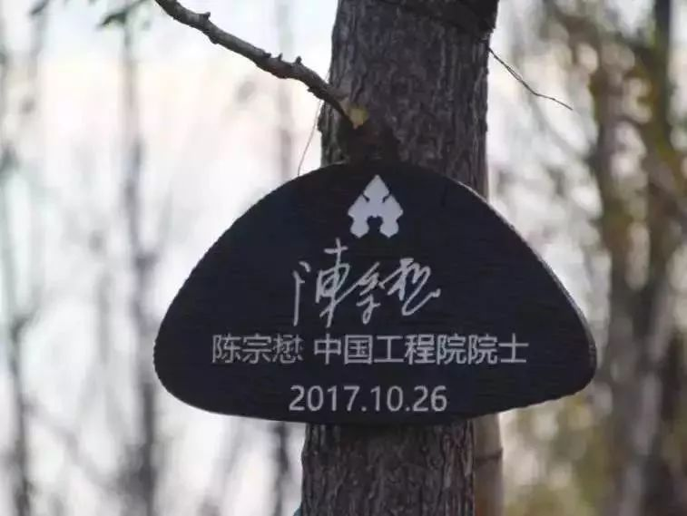 元宵节怎么度过?金华市妇联研学公益活动...