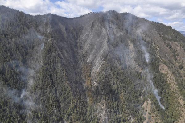 凉山木里县森林火灾已成立调查组,调查爆燃火灾成因