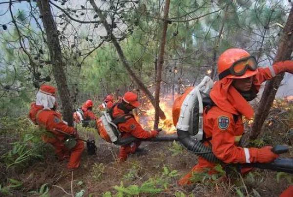 四川红会募集304万善款,将均分给30位凉山救火英雄家属