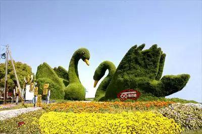 http://www.weixinrensheng.com/yangshengtang/292396.html