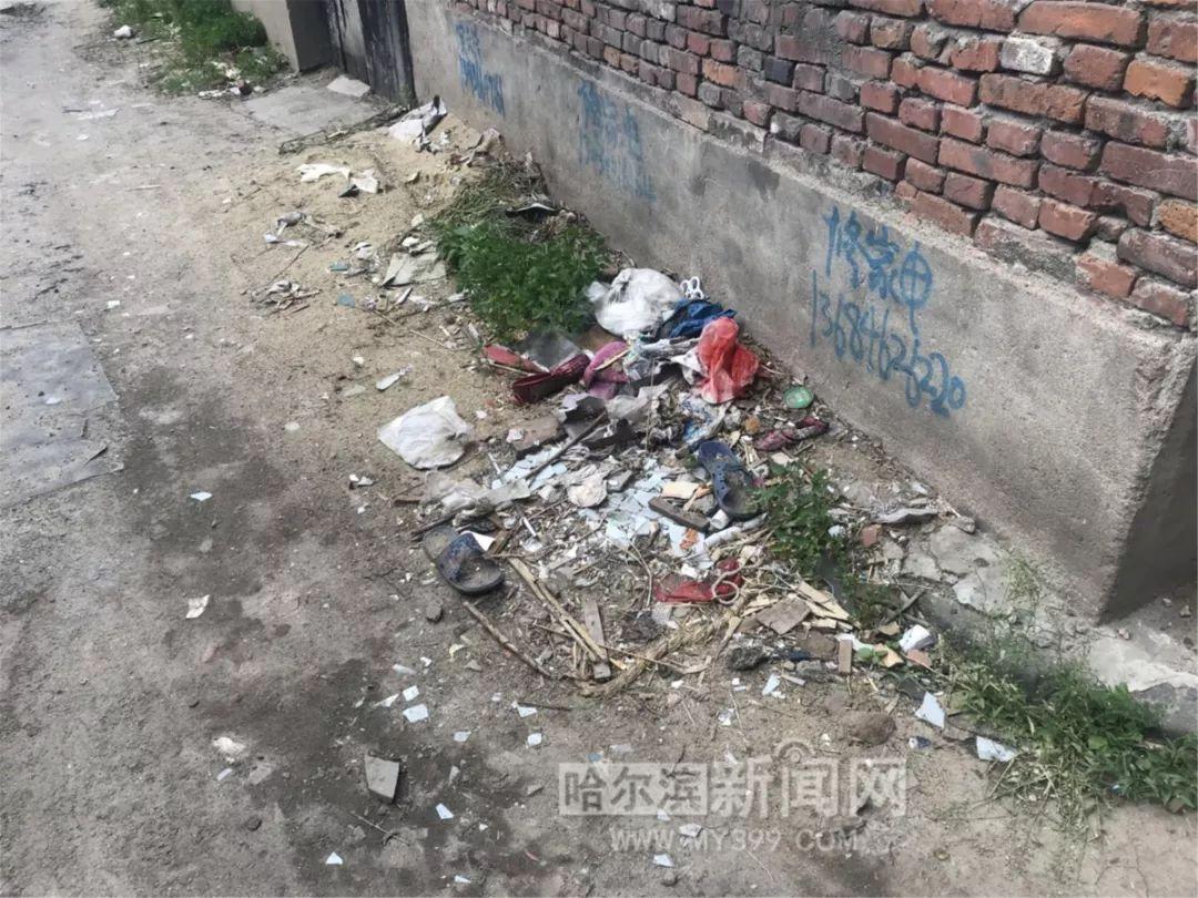 遍地是垃圾,废品存隐患……轴承厂新区家属区