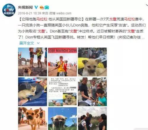 """一场发生在中国的""""碰瓷""""故事,感动了世界…"""