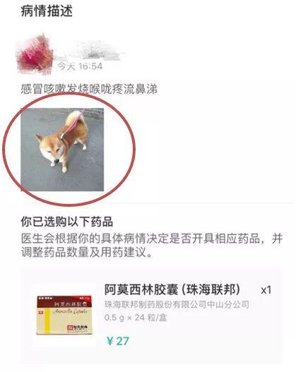 http://www.shangoudaohang.com/anli/156684.html