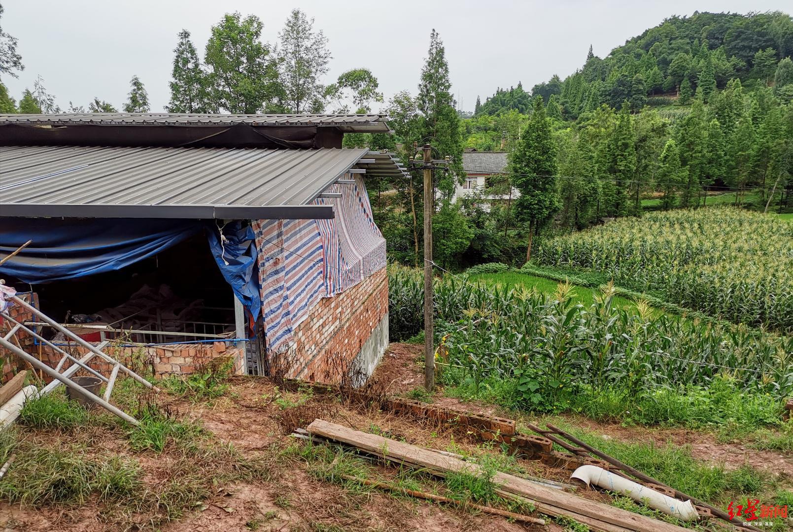 四川乐山一家三代4口人死在自家化粪池,疑似沼气中毒