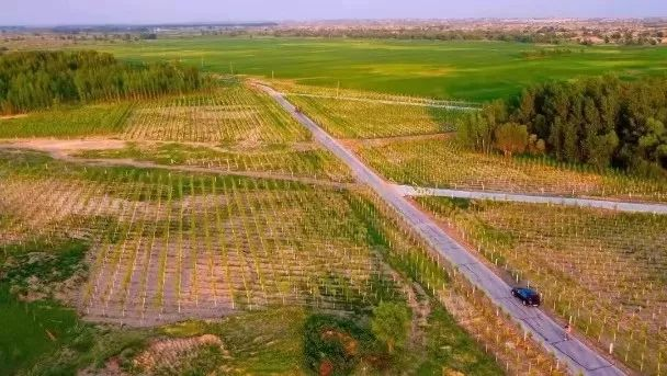 《75秒赛车怎么玩》_罕见!内蒙古一地上了《人民日报》头版头条