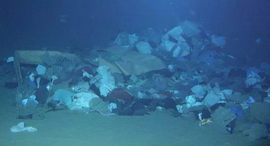 海底的垃圾堆。同济大学钟广法教授独家提供