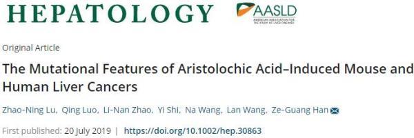 马兜铃酸致肝癌有定论了?上海交大韩泽广团队提供最新证据