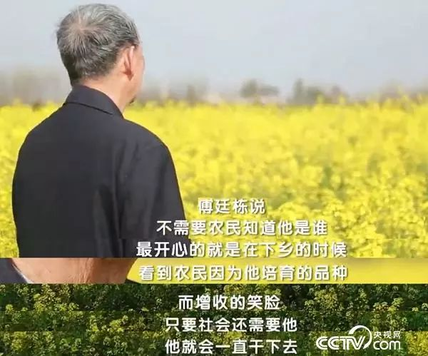 院士傅廷栋较劲60年解决油菜育种难题,年近八旬还全国奔波