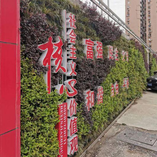 """建筑工地一定是""""扬尘大户""""?上海虹口22个工地设绿化围墙"""
