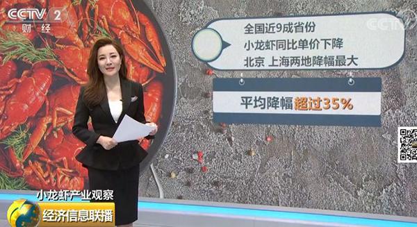 京沪小龙虾价格暴跌35%,市场为啥跳水了?