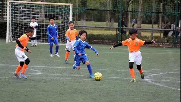 """上海中小学体艺项目将如何布局?小学初中高中形成""""一条龙"""""""