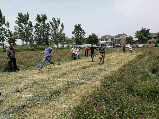 时间农场里的家庭接力赛,农场希望以这种方式与消费者建立联系。图片来源:第五相社区