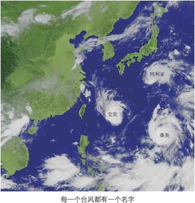 """涨知识丨""""风王""""利奇马登陆!台风的名字都是怎么起的?"""
