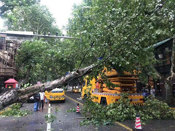 """台风""""利奇马""""降至强热带风暴,上海未来三小时仍有大到暴雨"""