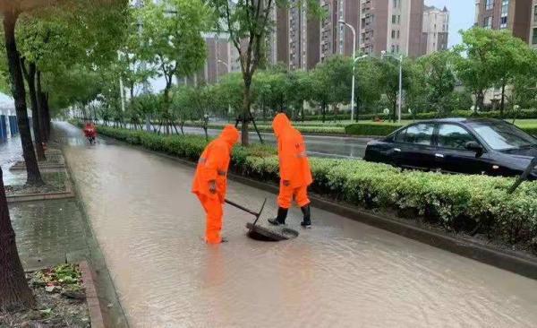 强风暴雨中,上海迅速处置道路积水、树木倒伏等灾情