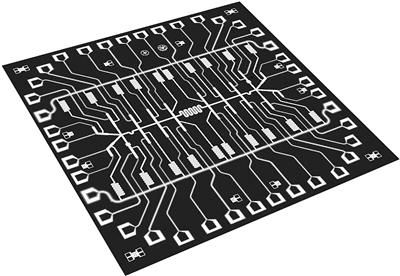 中国20量子比特芯片刷新纪录,187纳秒见证薛定谔猫态