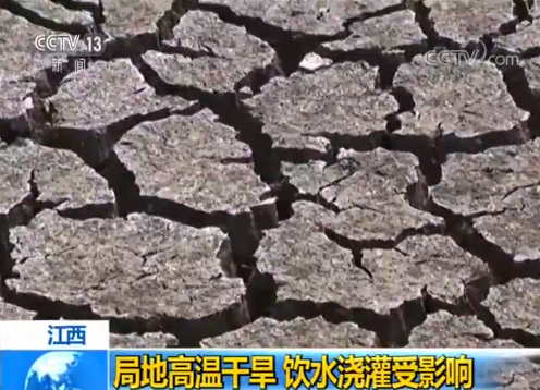 池塘农田龟裂,江西局地高温干旱影响饮水灌溉
