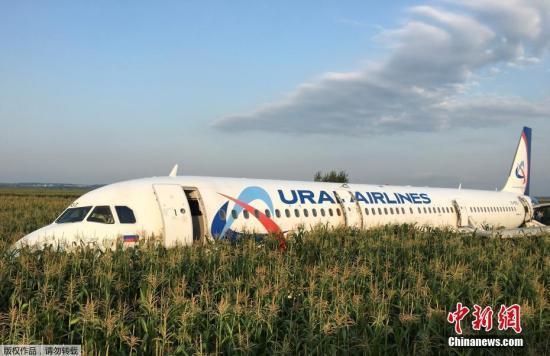 俄客机撞鸟群迫降致75伤,机长解释为何在玉米地硬着陆