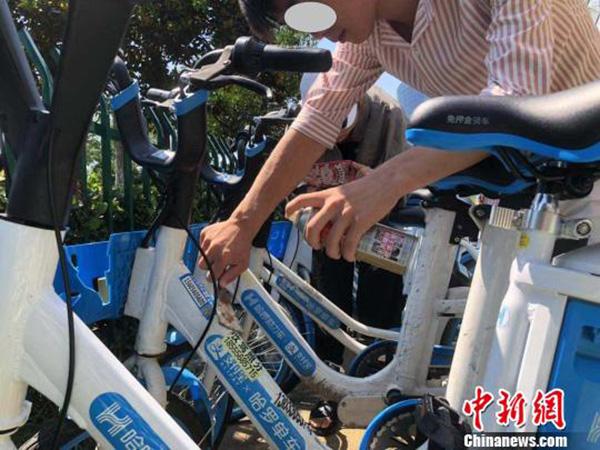 """<b>合肥男子在共享单车上贴小广告,被""""罚""""清理200辆单车</b>"""