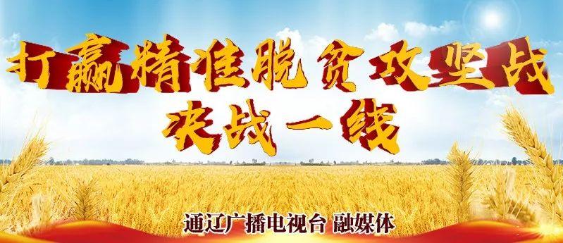 通辽新闻晚餐│2019