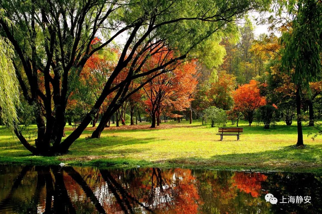 南北园风格各异,北园着重森林景色,有丘陵湖泊草地,南园则小桥流水一图片