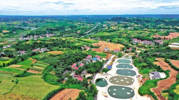 俯瞰金紫铺村水产养殖基地