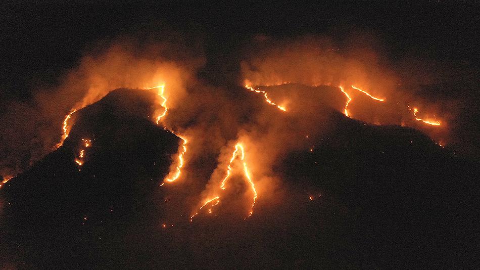 如果亚马孙雨林烧光了,世界会怎样?许多地方或永无四季交替