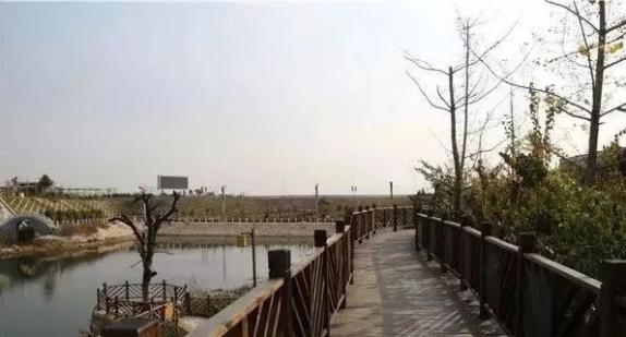 【旅发大会进行时】点赞!李家庄美丽乡村入选全国乡村旅游发展典型案例!