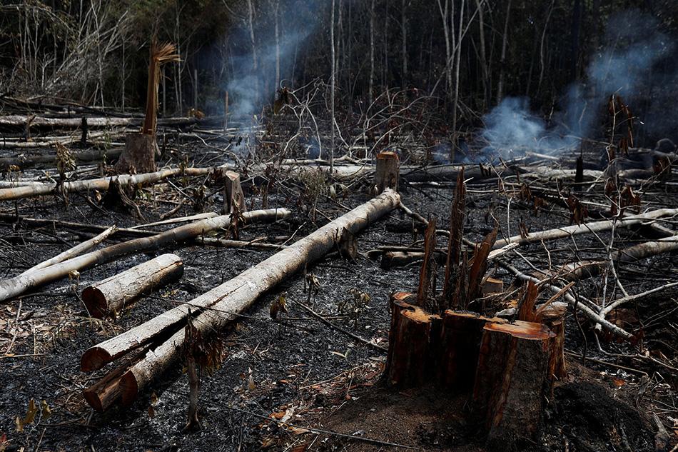 """当地时间2019年8月21日,巴西亚马孙州,亚马孙雨林遭遇大火侵袭。据巴西国家空间研究所的卫星数据显示,亚马孙地区森林大火已持续燃烧了16天,""""地球之肺""""正面临不能承受之重。 视觉中国 图"""
