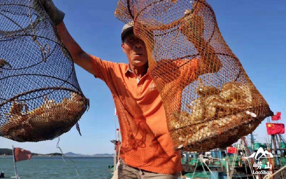 因海而兴的海洋美食之城_安阳旅游网