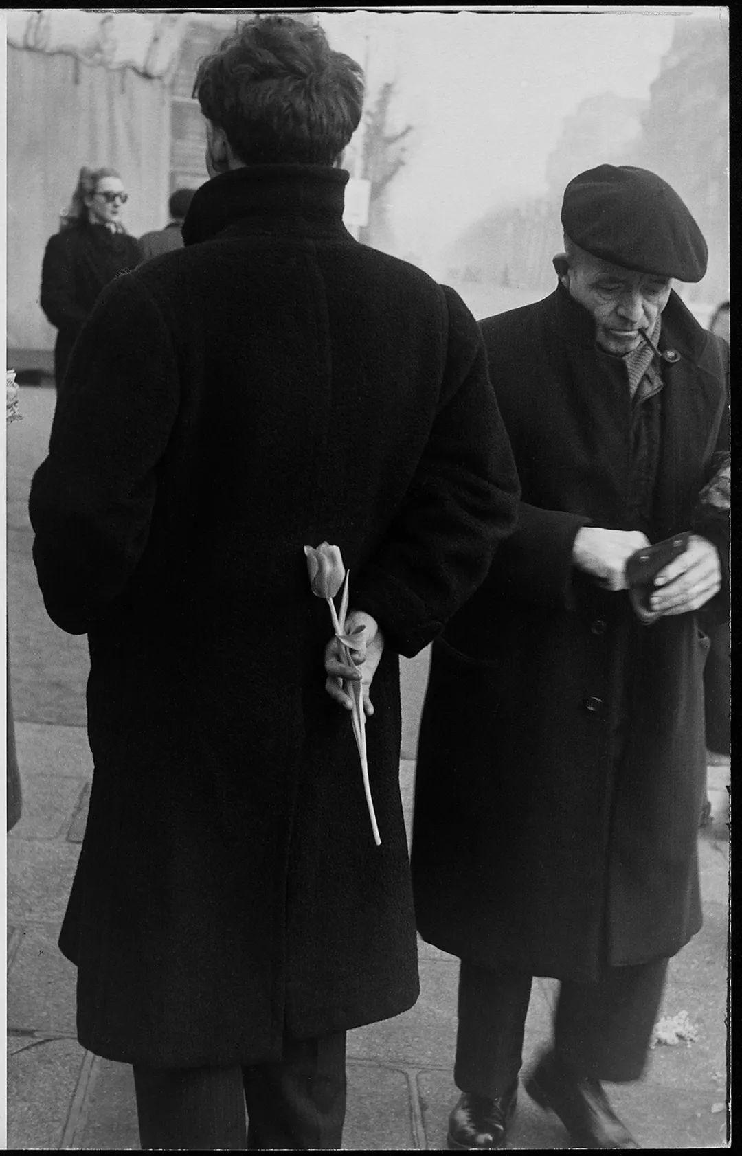 《郁金香》(1950年拍摄于巴黎)