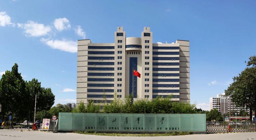 霸州一中_河北25个单位和116名个人获全国表彰,快来看有没有你的母校和恩师