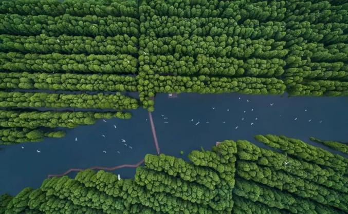 飞速飞艇70年沧桑巨变,这个航拍大赛带你俯瞰今日泰州之