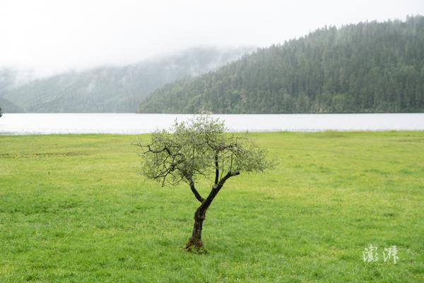 碧塔海自然保护区,作为国家公园景区曾经的一部分,该保护区目前已不再向游客开放。