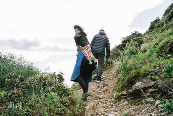 2019年8月3日,普达措国家公园不远处的基吕村,孙诺旺堆的妻子知诗卓玛上山采摘松茸,趁着夏天菌季为家庭增收。每天清晨、午前上山两次,运气好时她一天能捡2公斤多,有300多元收入。