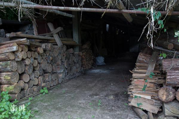 松木是传统正山小种制茶的必备原料,松木燃烧产生的烟熏会留下特殊的桂圆香。近些年为了控制松线虫病害,保护区内严格限制松木进区的数量,桐木人也因此担心会影响传统正山小种的传承。