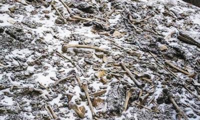 """""""人骨湖""""成因有新解,萦绕喜马拉雅山脉的谜团仍未散去"""