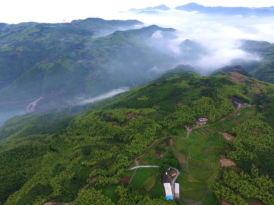 今年1月至8月,全国森林旅游游客量达到12亿人次,同比增长13%。 视觉中国 资料图