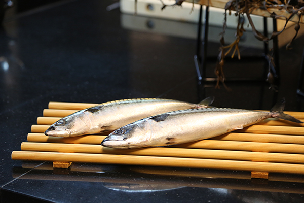 挪威青花鱼
