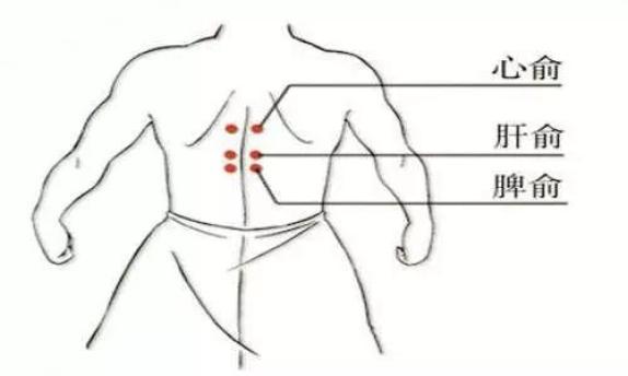 女穴����9��_【健康养生】9个特效养生穴,对应九种体质,每天按一按
